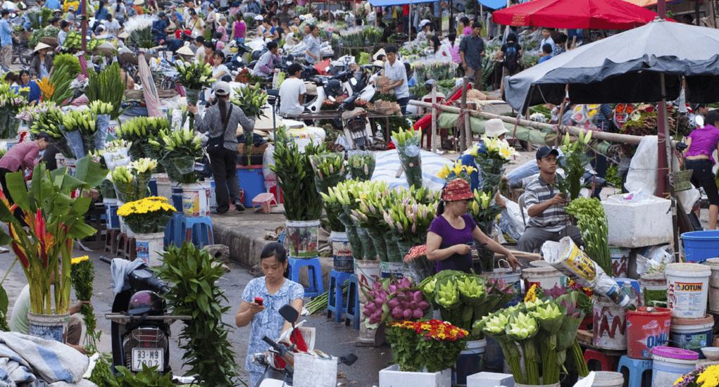 Vietnam - Quang Ba Flower Market