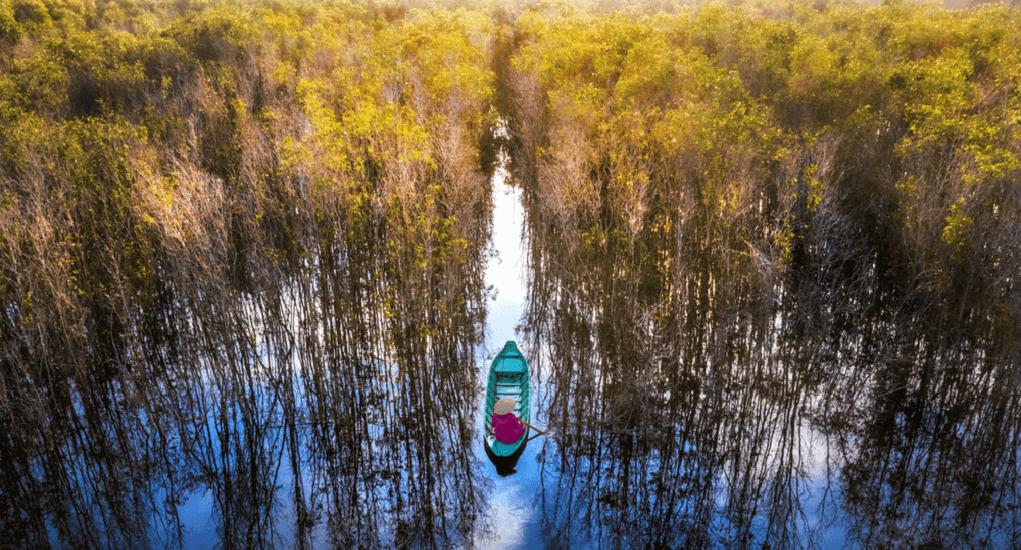Vietnam - Tram Chim National Park