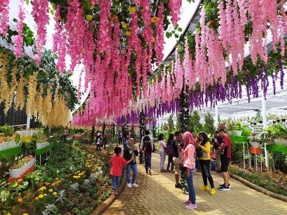 Wisata dengan varian bunga dan warna yang menarik