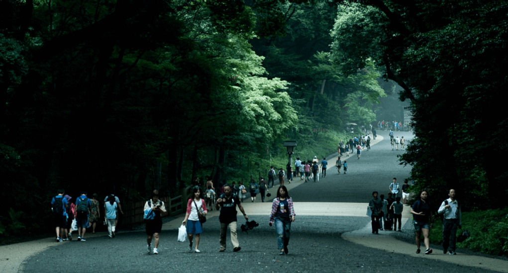 Yoyogi Park - About the Park