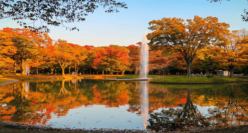 Yoyogi Park - About the Park