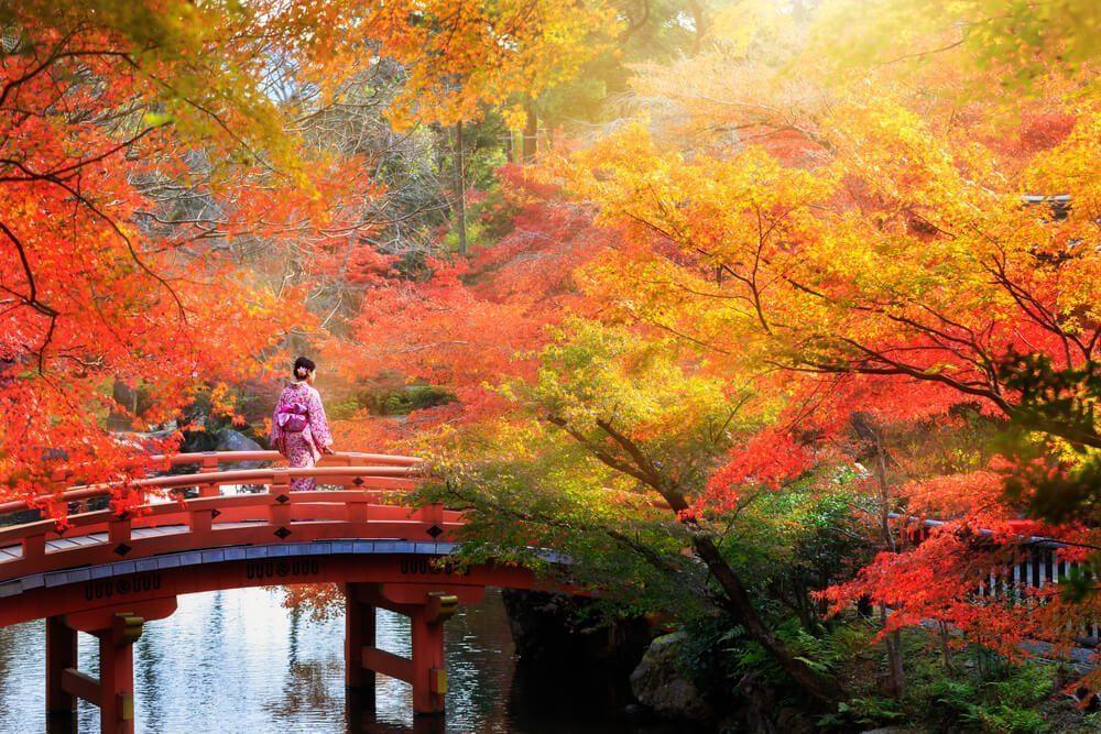 japanese autumn season