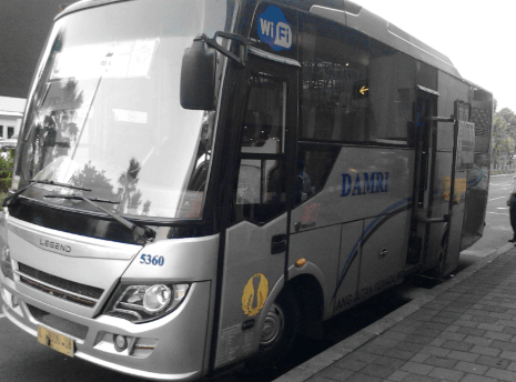 bus-damri