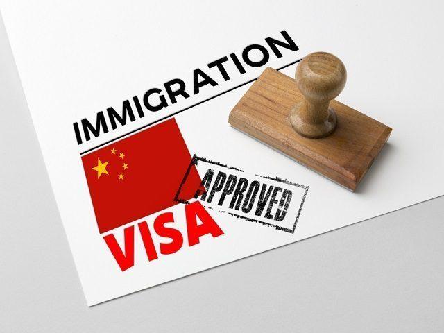 formulis pembuatan visa