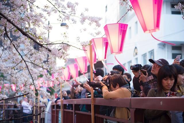 hanami festival in japan