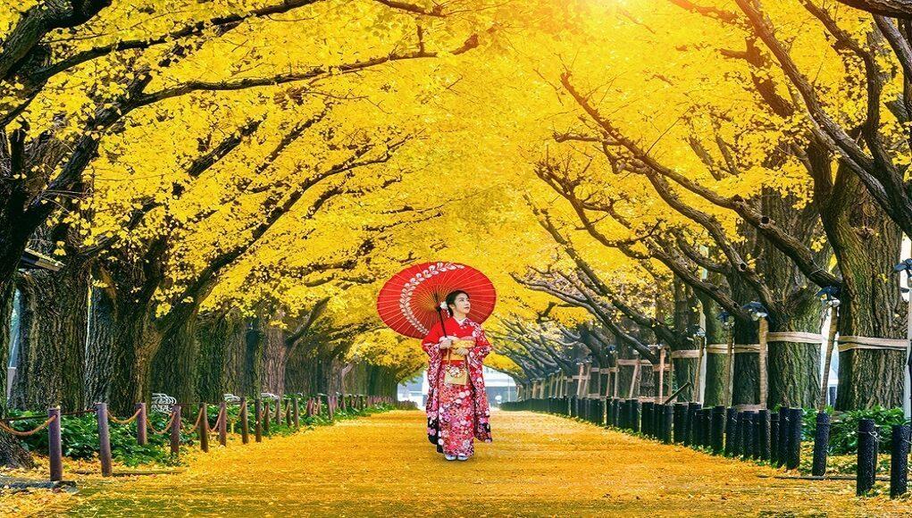 Ke Jepang Saat Musim Gugur Cek Itinerary Serunya Di Sini Airpaz Blog