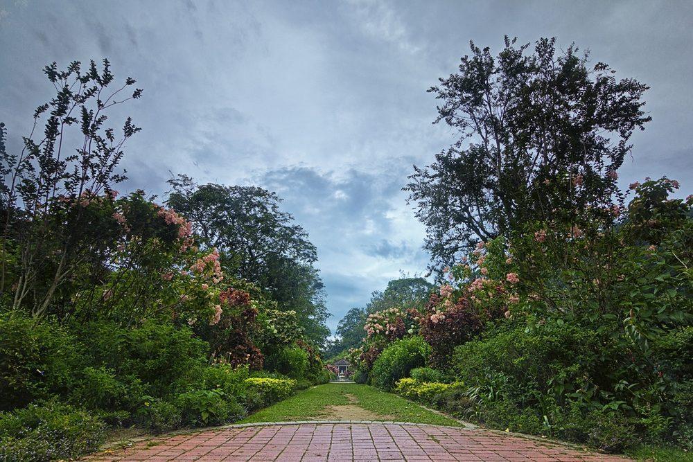 penang botanical garden yang indah