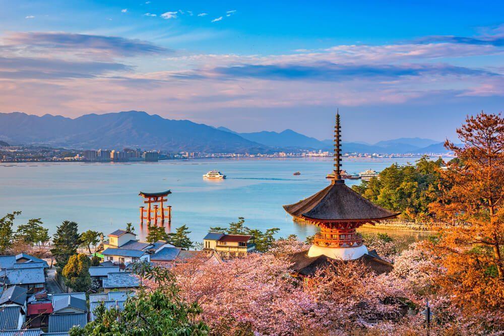 sakura hanami hiroshima