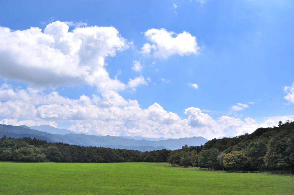 清里高原の紅葉