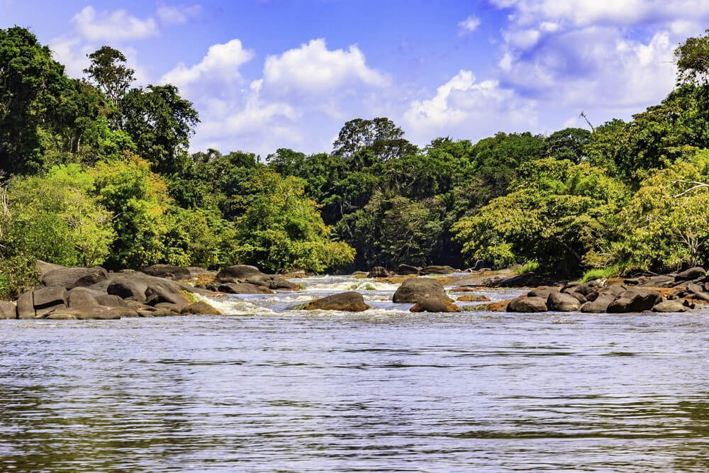 Central Suriname Nature Reserve