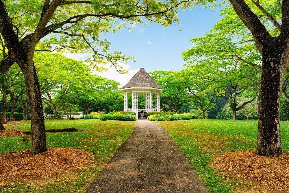 singapore-botanical-garden