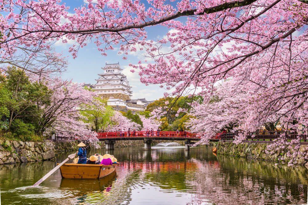 japanese spring season