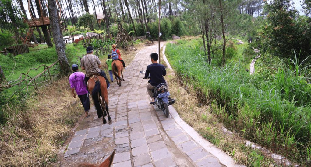 wisata gedong pass - Akses Menuju Gedong Pass